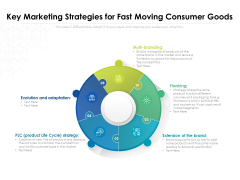Key Marketing Strategies For Fast Moving Consumer Goods Ppt PowerPoint Presentation Infographics Influencers PDF