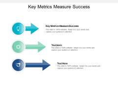 Key Metrics Measure Success Ppt PowerPoint Presentation Professional Icons Cpb