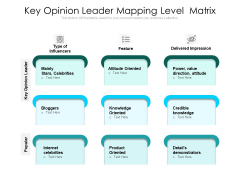 Key Opinion Leader Mapping Level Matrix Ppt PowerPoint Presentation Gallery Show PDF