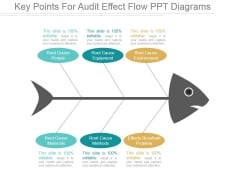 Key Points For Audit Effect Flow Ppt PowerPoint Presentation Template