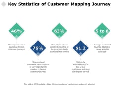 Key Statistics Of Customer Mapping Journey Ppt PowerPoint Presentation File Skills