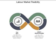 Labour Market Flexibility Ppt PowerPoint Presentation Styles Show Cpb