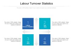 Labour Turnover Statistics Ppt PowerPoint Presentation Portfolio Examples Cpb