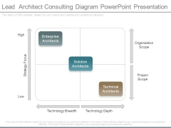 Lead Architect Consulting Diagram Powerpoint Presentation