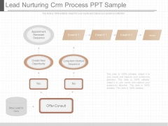 Lead Nurturing Crm Process Ppt Sample
