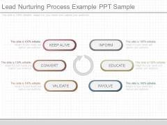 Lead Nurturing Process Example Ppt Sample