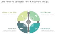 Lead Nurturing Strategies Ppt Background Images