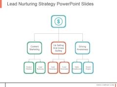 Lead Nurturing Strategy Powerpoint Slides