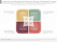 Leadership And Management Enterprise Strategy Presentation Images