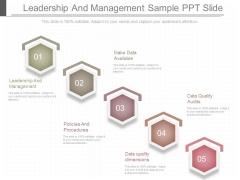 Leadership And Management Sample Ppt Slide