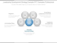 Leadership Development Strategy Example Ppt Examples Professional