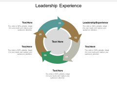 Leadership Experience Ppt PowerPoint Presentation Model Shapes Cpb