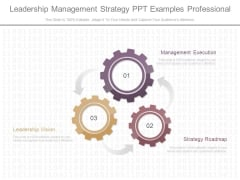 Leadership Management Strategy Ppt Examples Professional