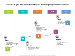 Lean Six Sigma Five Years Roadmap For Improving Organizational Process Formats