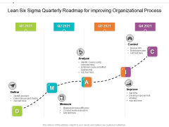 Lean Six Sigma Quarterly Roadmap For Improving Organizational Process Graphics