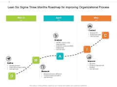 Lean Six Sigma Three Months Roadmap For Improving Organizational Process Background