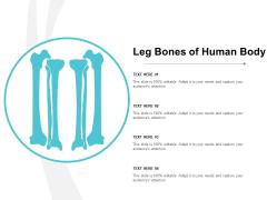 Leg Bones Of Human Body Ppt Powerpoint Presentation Infographic Template Show