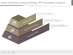 Levels Of Business Analysis Strategy Ppt Presentation Graphics
