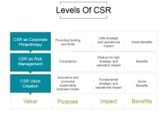 Levels Of Csr Ppt PowerPoint Presentation Information