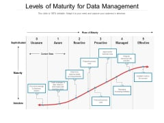 Levels Of Maturity For Data Management Ppt PowerPoint Presentation File Model PDF