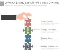 Levels Of Strategy Example Ppt Sample Download