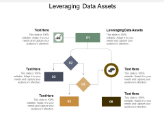 Leveraging Data Assets Ppt Powerpoint Presentation Ideas Infographic Template Cpb