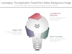 Leveraging The Application Powerpoint Slides Background Image