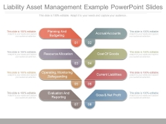 Liability Asset Management Example Powerpoint Slides
