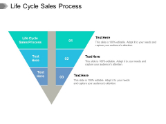 Life Cycle Sales Process Ppt PowerPoint Presentation Model Infographic Template Cpb Pdf