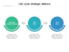 Life Cycle Strategic Alliance Ppt PowerPoint Presentation Inspiration Demonstration Cpb Pdf