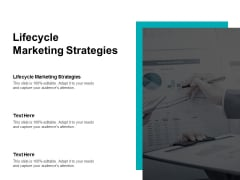 Lifecycle Marketing Strategies Ppt PowerPoint Presentation Slides Sample Cpb