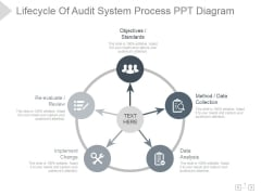 Lifecycle Of Audit System Process Ppt PowerPoint Presentation Icon