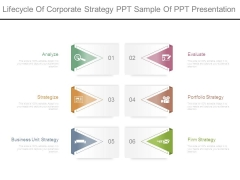 Lifecycle Of Corporate Strategy Ppt Sample Of Ppt Presentation