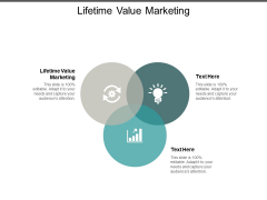Lifetime Value Marketing Ppt PowerPoint Presentation Summary Introduction Cpb