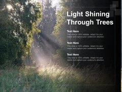 Light Shining Through Trees Ppt Powerpoint Presentation Gallery Clipart Images