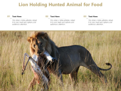 Lion Holding Hunted Animal For Food Ppt PowerPoint Presentation Portfolio Gallery PDF