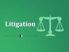 Litigation Ppt PowerPoint Presentation Inspiration Summary