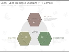 Loan Types Business Diagram Ppt Sample