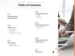 Logo Design Table Of Contents Ppt Summary Elements PDF