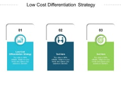 Low Cost Differentiation Strategy Ppt PowerPoint Presentation Icon Guidelines Cpb Pdf