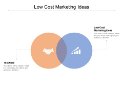Low Cost Marketing Ideas Ppt PowerPoint Presentation Infographics Skills Cpb