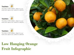Low Hanging Orange Fruit Infographic Ppt PowerPoint Presentation File Backgrounds PDF