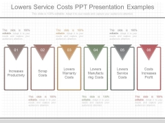 Lowers Service Costs Ppt Presentation Examples