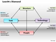 Leavitts Diamond Business PowerPoint Presentation
