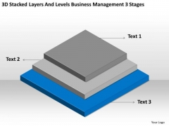 Levels Business Management 3 Stages Ppt Plan Outline Example PowerPoint Slides