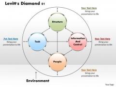 Levitts Diamond 01 Business PowerPoint Presentation
