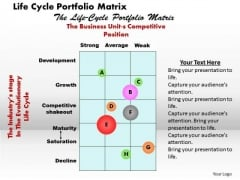 Life Cycle Portfolio Matrix Business PowerPoint Presentation