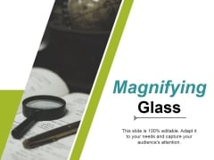 Magnifying Glass Ppt PowerPoint Presentation Portfolio Summary
