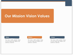 Main Revenues Progress Levers For Each Firm And Sector Our Mission Vision Values Pictures PDF