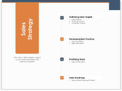 Main Revenues Progress Levers For Each Firm And Sector Sales Strategy Ppt Styles Deck PDF